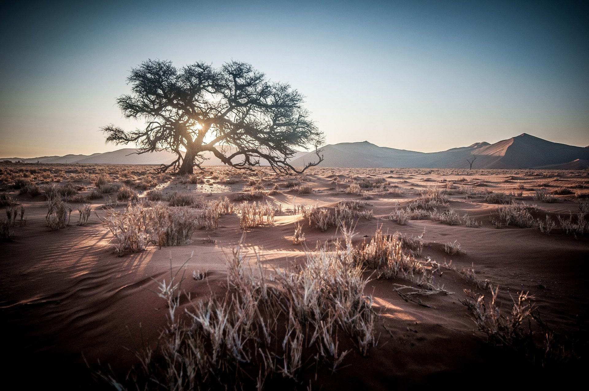 NamibRand, une splendide réserve naturelle à explorer en Namibie