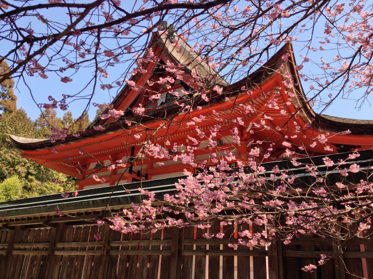 Tourisme en Asie : 3 bonnes raisons de privilégier le Japon
